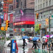 New York regen