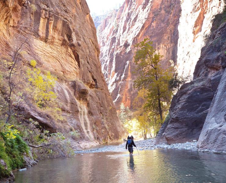 Wandelingen in Zion National Park