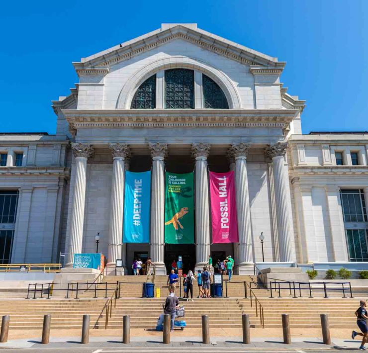 National Museum of Natural History in Washington DC