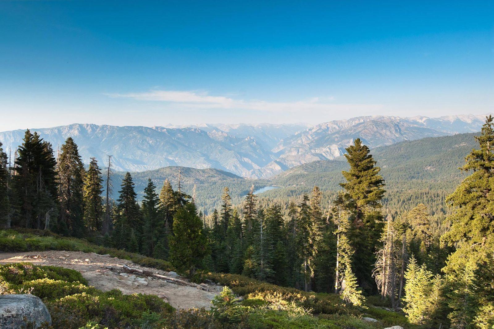 Sequoia en Kings Canyon NP