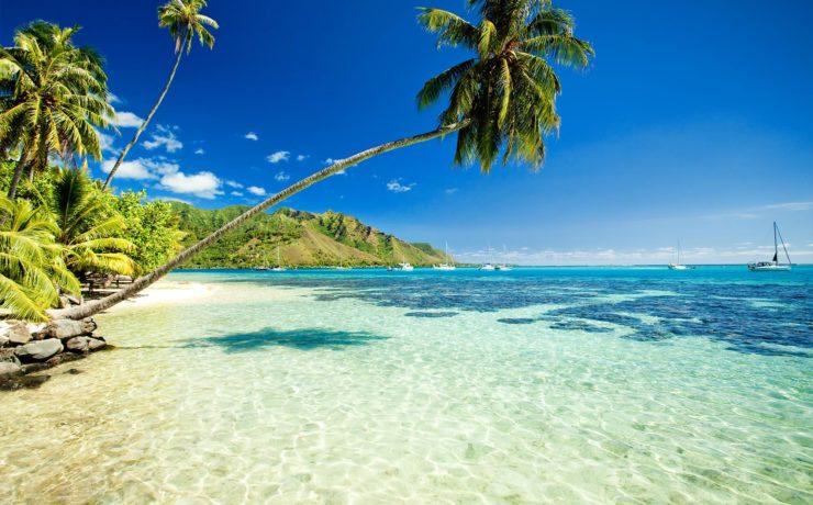 Wat te doen tijdens een vakantie naar Hawaii